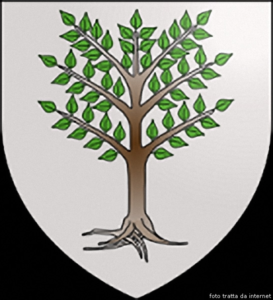 Arbore irraighinadu de Arbarè