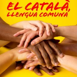 Sa Plataforma per la Llengua, assòtziu pro su catalanu ufitziale